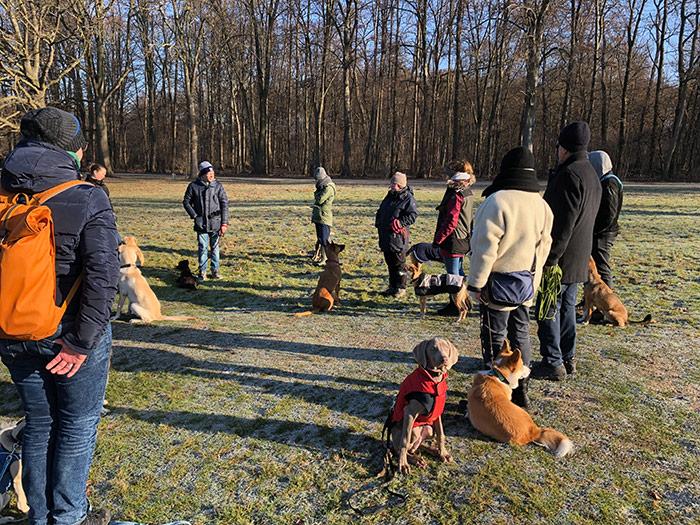 Hundetraining am Fort VI