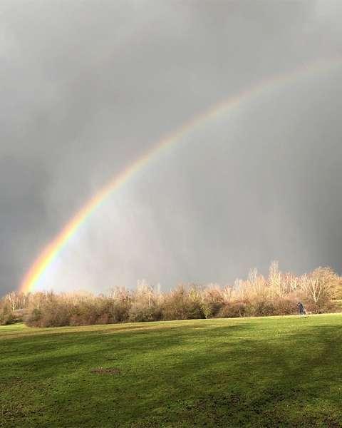Regenbogen über Wiese im Ossendorfpark