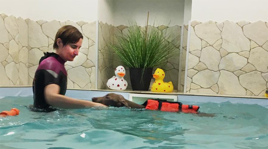 Erste Übungen in der Wassertherapie