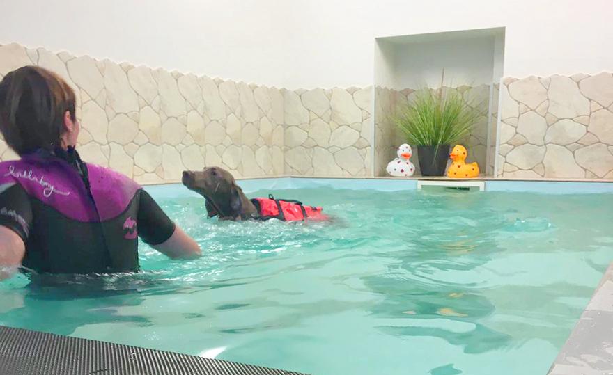 Schwimmen in der Wassertherapie